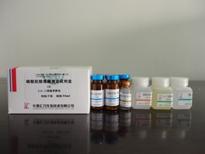 磷酸肌酸激酶(CK)测定试剂盒